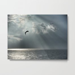 Clifftop hunter 2 Metal Print