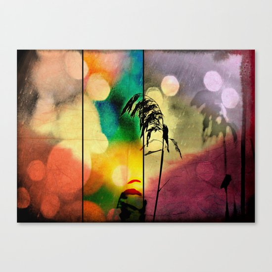 Rainbow Grass Diamond Canvas Print