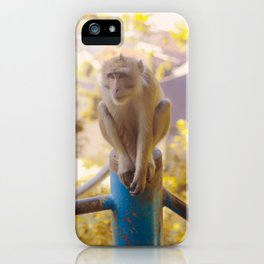 Monkey on the fence iPhone Case
