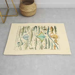 Vintage Fishing Diagram // Poissons II by Adolphe Millot 19th Century Science Textbook Artwork Rug