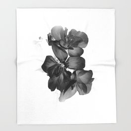 Black Geranium in White Throw Blanket