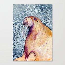 Chubs Canvas Print