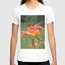 lily bloom and 9 buds T-shirt