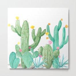 Cactus Cacti Succulent Garden Desert Southwest Metal Print