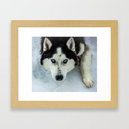 Let's play! Framed Art Print
