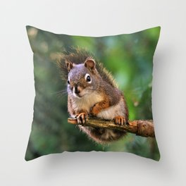 Who, Me? A Saucy Red Squirrel Throw Pillow