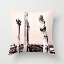 Tierra Yerma Throw Pillow