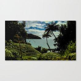 able tasman natural reserve Canvas Print