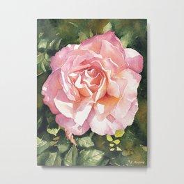 Pink rose watercolor painting Metal Print