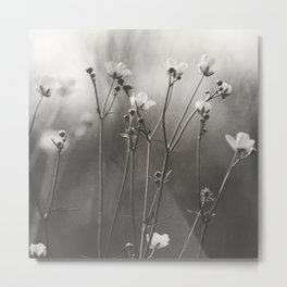 Blurry dreams Metal Print