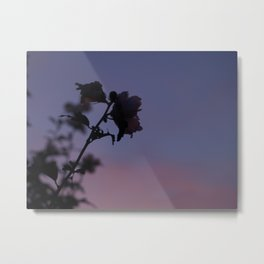 Bitter-sweet Metal Print