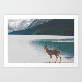 Bowman Lake Visitor Art Print