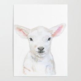 Lamb Face Watercolor Poster