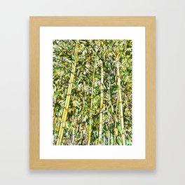 Asian Bamboo forest Framed Art Print