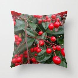 Winter Berries 8x12 Throw Pillow