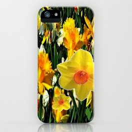 GOLDEN ORANGE YELLOW SPRING DAFFODILS iPhone Case