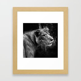A King only bows down to a Queen Framed Art Print