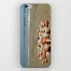 Shells on the Beach iPhone & iPod Skin