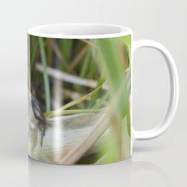 The Frog Coffee Mug
