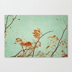 autumn happenings Canvas Print
