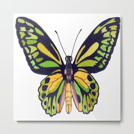 Green & Gold Butterfly Metal Print