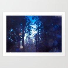 Nature Forest - Magical Blue Winter Woods Art Print