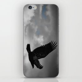 Young Bald Eagle iPhone Skin
