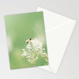 Bee on Flower Stationery Cards