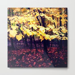 Under The Shade Of Yellow Metal Print