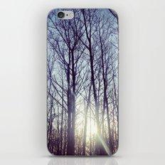 Morning sun iPhone & iPod Skin