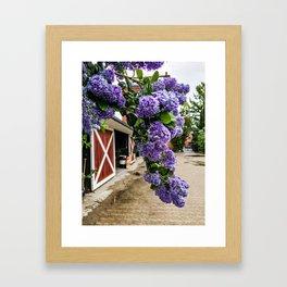 Purple Flowers at the Botanical Garden in Copenhagen Framed Art Print