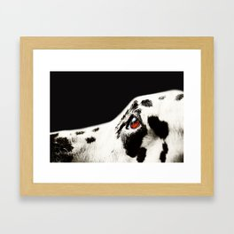 The Amber Eye. Kokkie. Dalmation Dog Framed Art Print