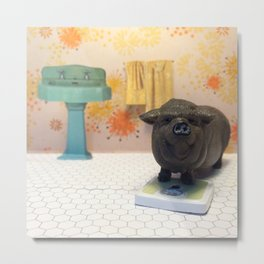 The Pot-bellied Pig & The Weigh In Metal Print