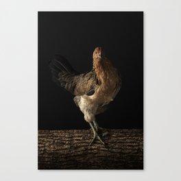 BLANCHE 16x24 Canvas Print