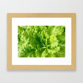 Lettuce closeup Framed Art Print