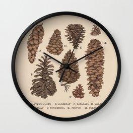 Pinecones Wall Clock