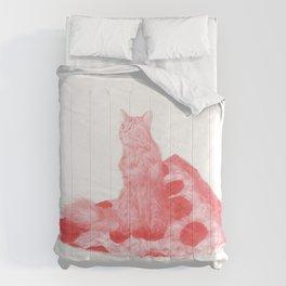Regnum Marauorum Comforters