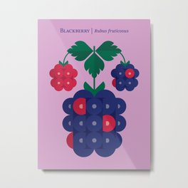 Fruit: Blackberry Metal Print