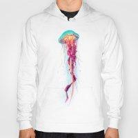 jellyfish Hoodies featuring Jellyfish by Nikittysan