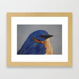 Blue Bird Head Framed Art Print
