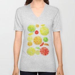 colorful citrus fruit watercolor Unisex V-Neck