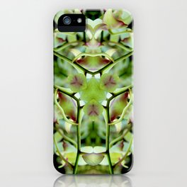 The Path iPhone Case