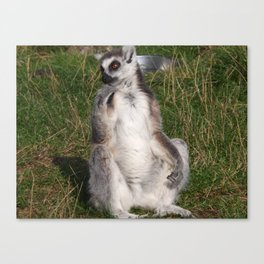 I Do Ponder Canvas Print