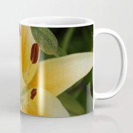Asiatic Yellow Lily Coffee Mug