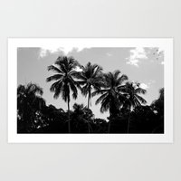 puerto rico Art Prints featuring Palm Trees Puerto Rico by Derek Delacroix