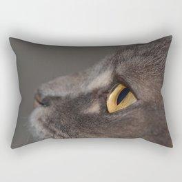 Cat Eye Rectangular Pillow