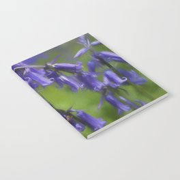 Bluebell Arch Notebook