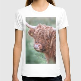 Scottish cow close up T-shirt