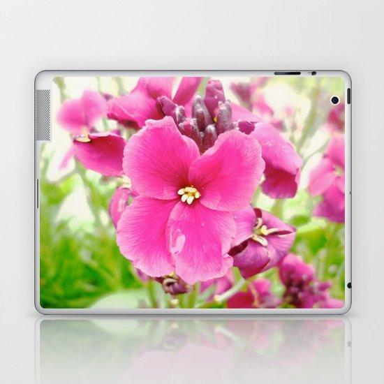 Chartwell Laptop & iPad Skin