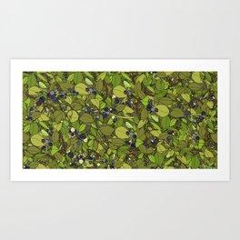Blueberry Bushes Art Print